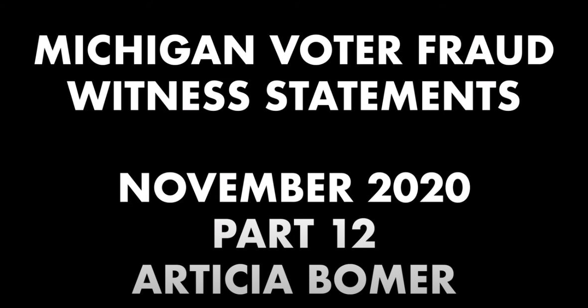 Michigan Voter Fraud Witness Statements